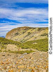 Patagonia Forest Landscape, El Chalten, Argentina -...