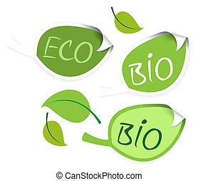 Set of leaf labels