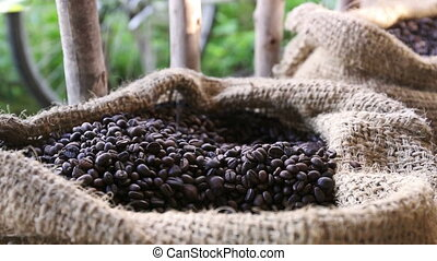 Inside close up of coffee grains in warm light on a jute...