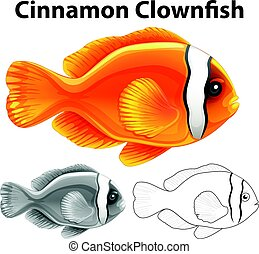 Doodle character for cinnamon clownfish illustration