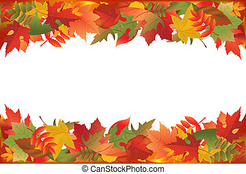 Fallen Leaves - Autumn Falling Leaves, Isolated On White...