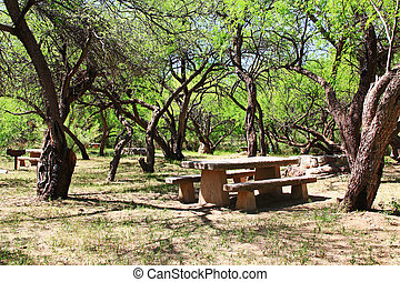 El Bosquecito Picnic Area in Colossal Cave Mountain Park -...