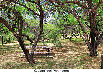 La Posta Quemada Ranch Picnic Area in Colossal Cave Mountain...