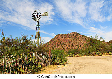 Windmill and Butterfly Garden on La Posta Quemada Ranch in...