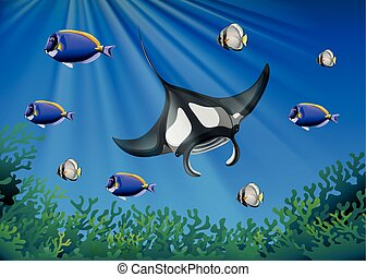 Stingray and many fish under the ocean illustration