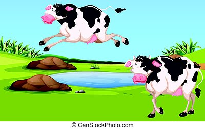 Two cows in the farm