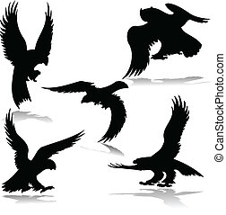 eagles illustration vector silhouettes