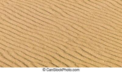 Sandstorm in desert, close up - Real sandstorm in desert,...