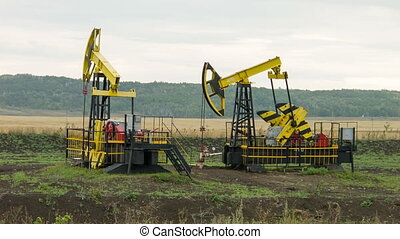Two oil pumps at work