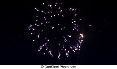 Colorful fireworks with heart in final in the starry sky