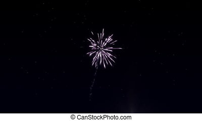 Six shots of fireworks in the starry sky - Beautiful...