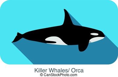 plano, asesino, diseño, mar, ballena, natación, icono