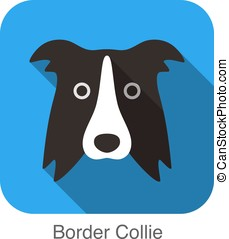 Border Collie dog face flat icon