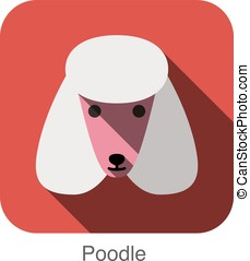 Poodle animal face ui flat design