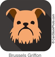 Brussels Griffon dog face flat icon, dog series