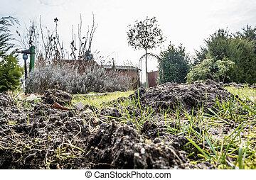 Close up of molehill - Close up of huge molehill during...
