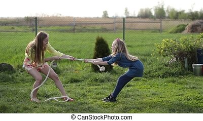 Joyful family playing tug of war in yard outdoors - Charming...