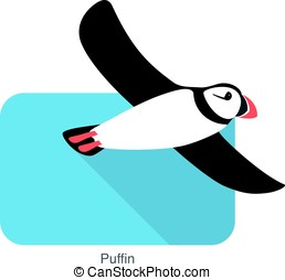 Iceland bird, flat cute puffin flying, vector illustration -...