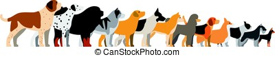 set of dog breeds, side view, vector illustration - set of...