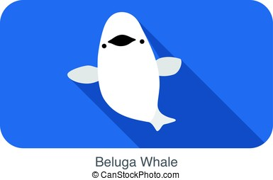 Beluga whale swimming in the water, flat icon, vector...