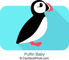 Iceland bird, flat cute puffin baby, vector illusration -...