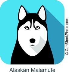 Siberian Husky face, Alaskan Malamute, vector illustrator