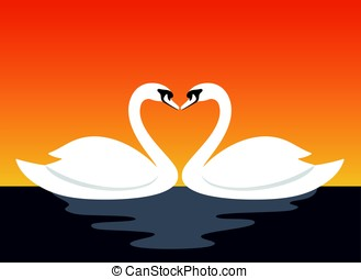 couple swan lovers face to face, vector illustration -...