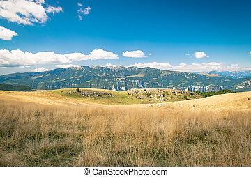 Meadows in the mountains create sinuous lines. - View of...
