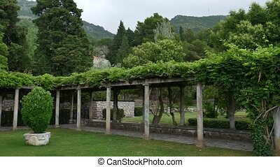 The restaurant at the Villa Milocer, under the wisteria...