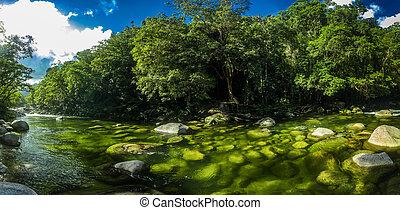Mossman Gorge - river in Daintree National Park, Queensland,...