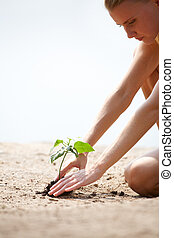Cultivating plant - Image of young female taking care of...