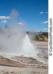 Geyser - Sawmil geyser eruption in the Yellowstone national...