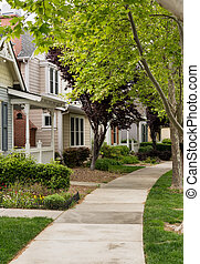 Tree lined street in California residential neighborhood -...