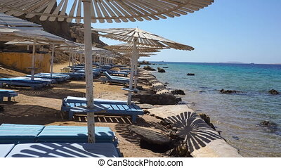 beach deck chairs under umbrellas on the seashore - a lot of...