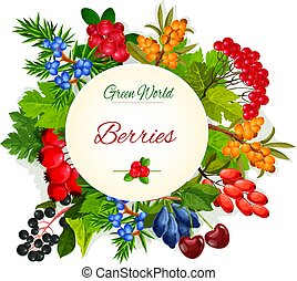 Vector poster of wild berries and ruits - Wild berries and...