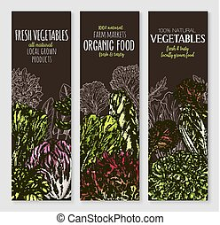 Vector banners of farm grown salads vegetables - Salads and...