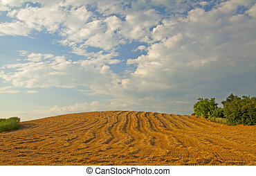 Hill - Closeup of furrows that leads on top of the hill
