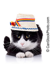 cute black and white cat with hat - cute black and white cat...