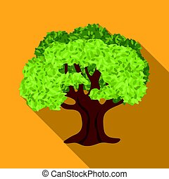 Olive Tree.Olives single icon in flat style vector symbol...