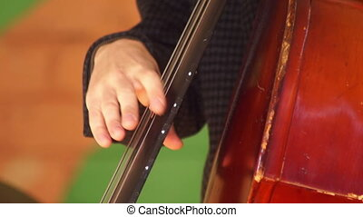 Music concert instrument - Musician playing upright bass old...