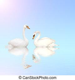 藍色, 水, 天鵝, 啞巴