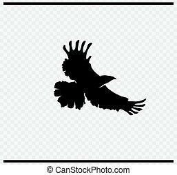 eagle icon black color on transparent background
