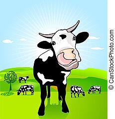 vaca, solto, língua
