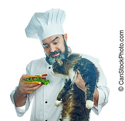 chief cook holding sandwich and hungry cat - chief cook...