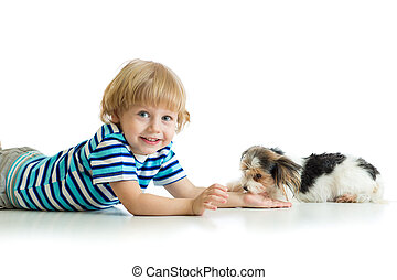 Friendship between child and cute dog Yorkie terrier....
