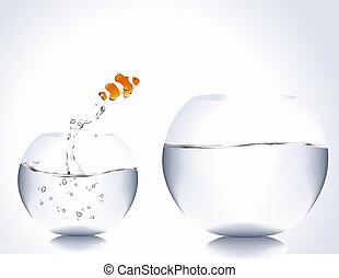 Clown Fish - clown fish jumping from small bowl to big bowl.