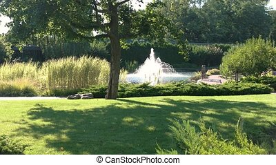 Summer nature and fountain. Green plants near the water....
