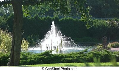 Fountain and summer nature. Green plants near clean pond....