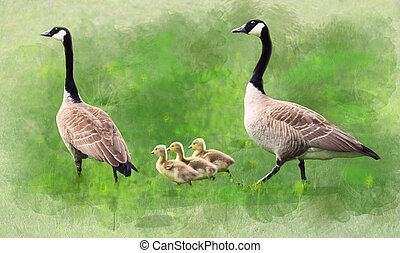 Geese Family Watercolor Painting - Majestic geese family...