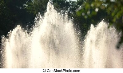 Fountains in the water. Sunlight and splashes. Fountain...
